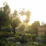 Rock Garden Dalhousie places to visit in dalhousie