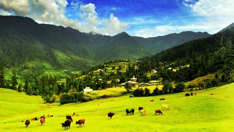 sainj valley himachal pradesh