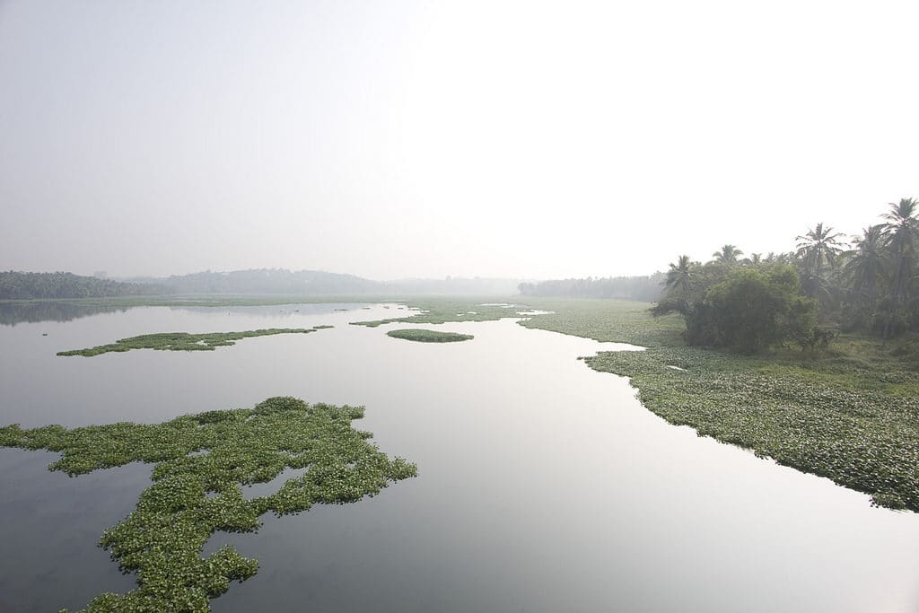 Akkulam lake